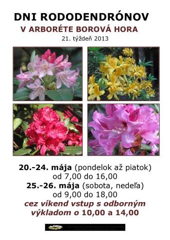 plagáty2013_1